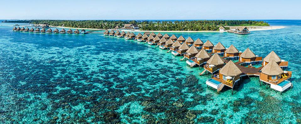 mercure maldives kooddoo kooddoo island verychic ventes priv es d 39 h tels extraordinaires. Black Bedroom Furniture Sets. Home Design Ideas