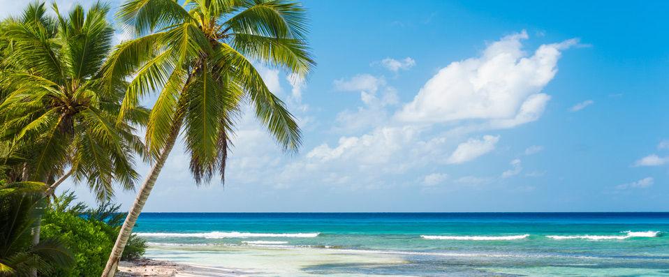 Occidental Punta Cana Resort ***** - Punta Cana -
