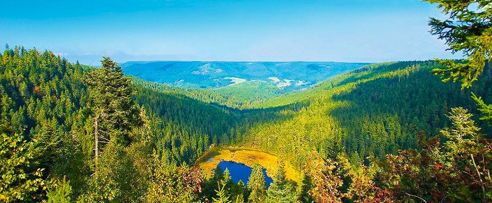 Schwarzwald Panorama **** - Forêt-Noire - hotel - vente-privee - promo - vente-flash - verychic