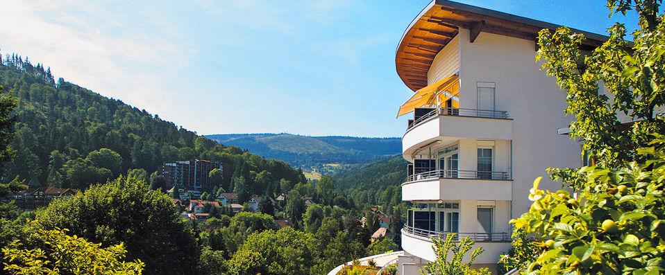 Schwarzwald Panorama ****